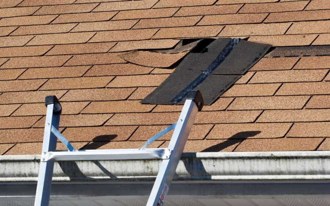 How to Deal with Roof Wind Damage in Portland, OR